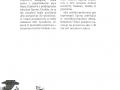 karnev v novin